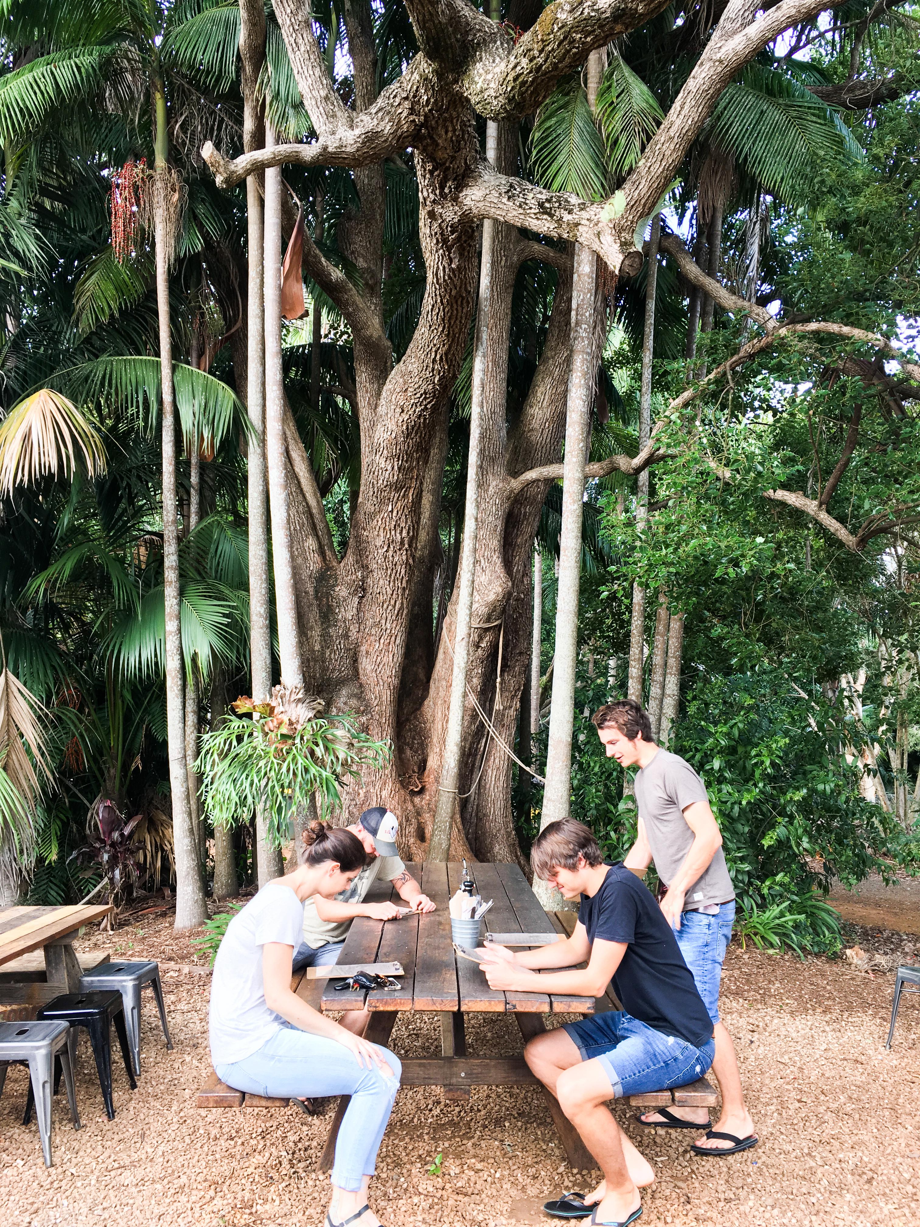Linn-Dubh - Kaffee und Frühstück - die besten Spots in Byron Bay und Umgebung